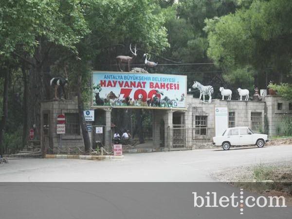 antalya-hayvanat-bahcesi