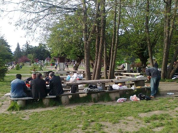 Gölcükte piknik alanları