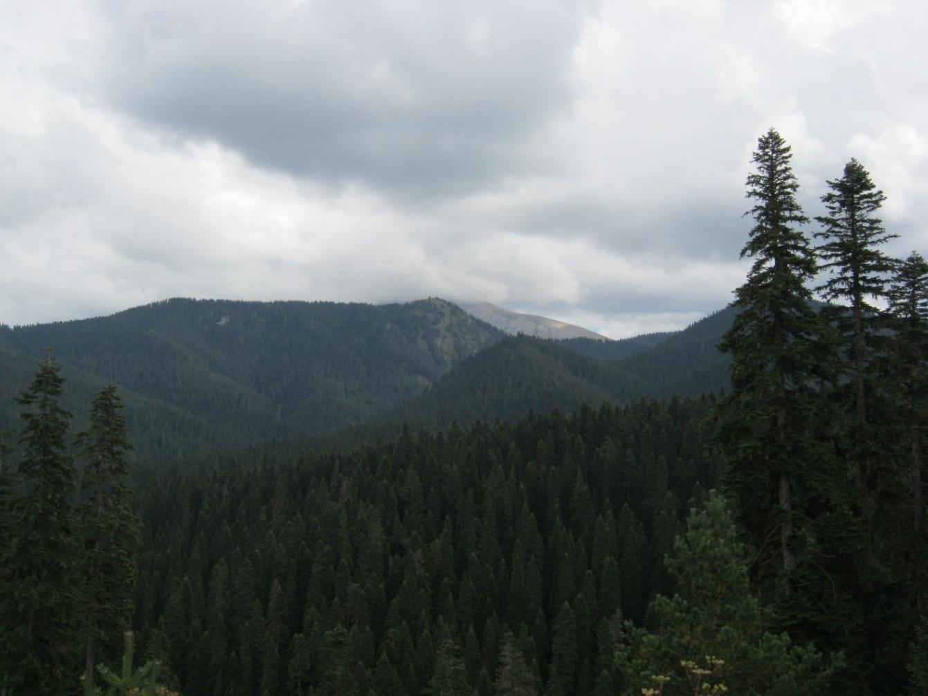 Kastamonu Ilgaz Dağları