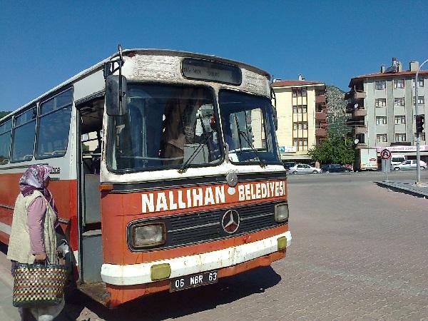 Nallıhan Belediye Otobüsü