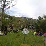 Kartaltepe piknik alanı hangi günler açık ?