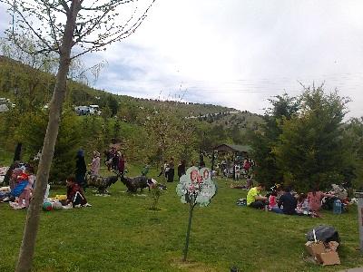 Kartaltepe piknik alanı